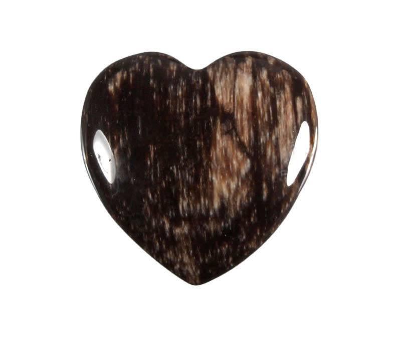 Versteend hout edelsteen hart 4 cm