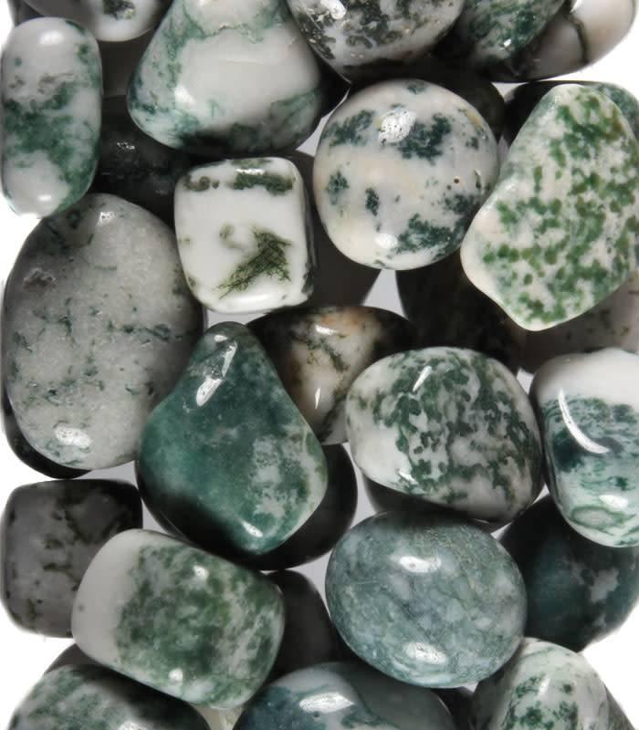 Agaat (boom) steen getrommeld 20 - 30 gram