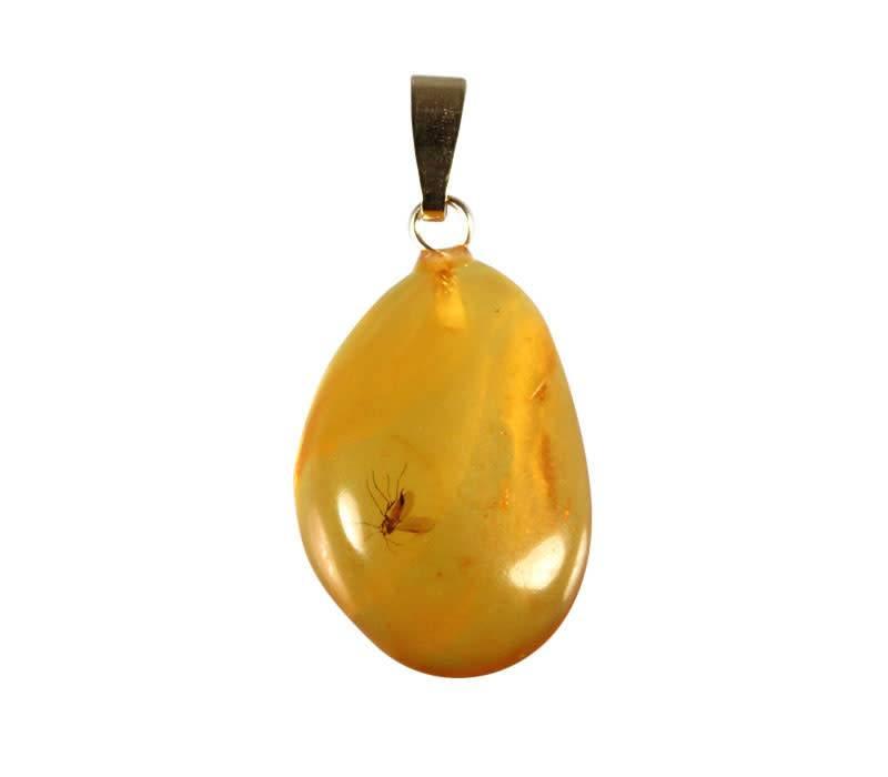 Barnsteen hanger met insect met 14k gouden oogje