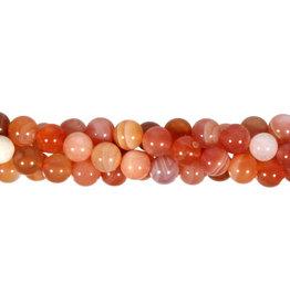 Agaat (abrikoos) kralen rond 8 mm (streng van 40 cm)