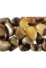 Septarie steen getrommeld 10 - 20 gram