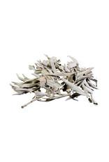 Losse witte salie (100 gram)