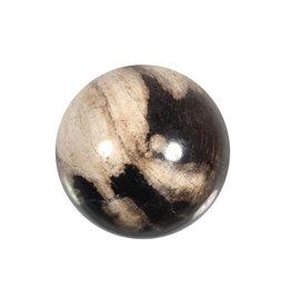 Versteend hout edelsteen bol 52 - 55 mm
