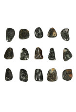 Stonehenge (Preseli) bluestone steen getrommeld 2 - 5 gram