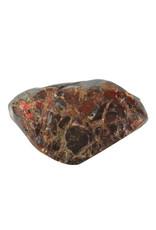 Ammoliet deels gepolijst 9 x 5,5 x 2,3 cm | 182 gram