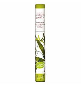 Plant wierook eucalyptus & kruidnagel | 30 kleine stokjes