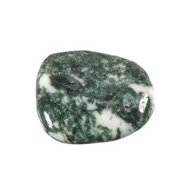 Agaat (boom) steen plat gepolijst