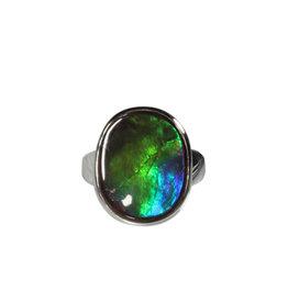 Zilveren ring ammoliet maat 17 1/2 | ovaal 1,8 x 1,4 cm