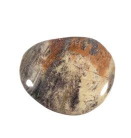 Jaspis (zilverblad) steen plat gepolijst