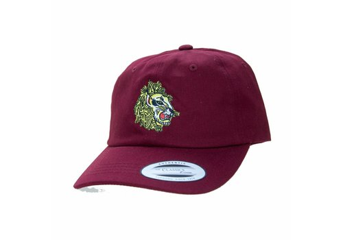 Eindje Eindje Dad Hat Lion Burgundy