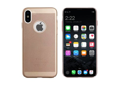 Case Mesh Holes iPhone X/Xs Gold