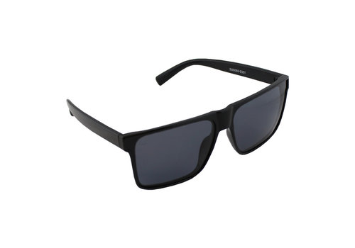 Sunglasses Polaroid Pilot - Glanzandd Black + case