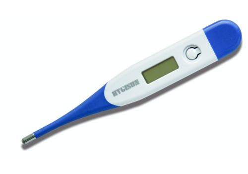 Thermometer body