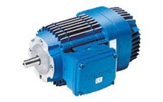 DEMAG KB Motoren