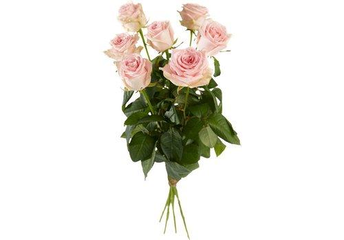 Rozen roze kort