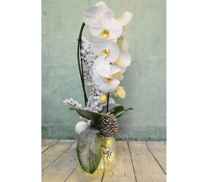 Kerstorchidee met licht