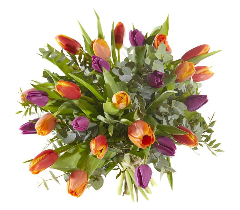 Tulpenboeket warm