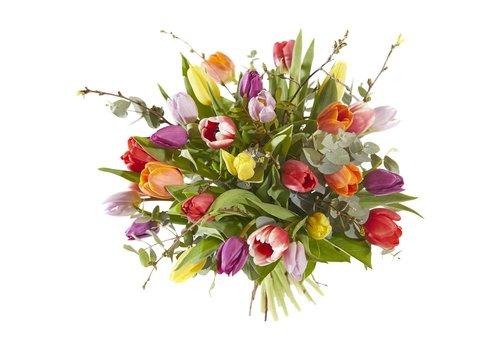 Boeket kleurrijke tulp