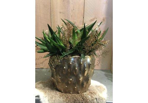 Plant deco gouden pot