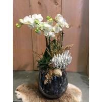 Orchideeën in Fidrio vaas