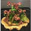 Plankje met Bordeau-kleurige bloesem takjes