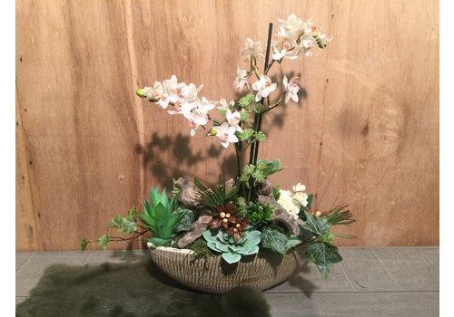 Ron Schuitje met licht-roze Orchidee