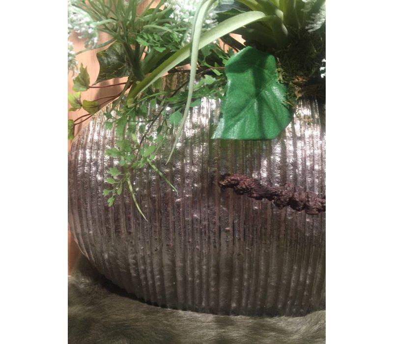 Zilveren vaas met Bereklauw & Tillandsia