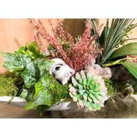 Witte schuit gevuld met witte Orchideeën en vetplanten