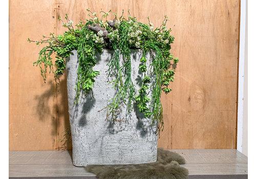 Ron Hoge cementbak gevuld met Rhipsalis, Sedem en fijne bloesem