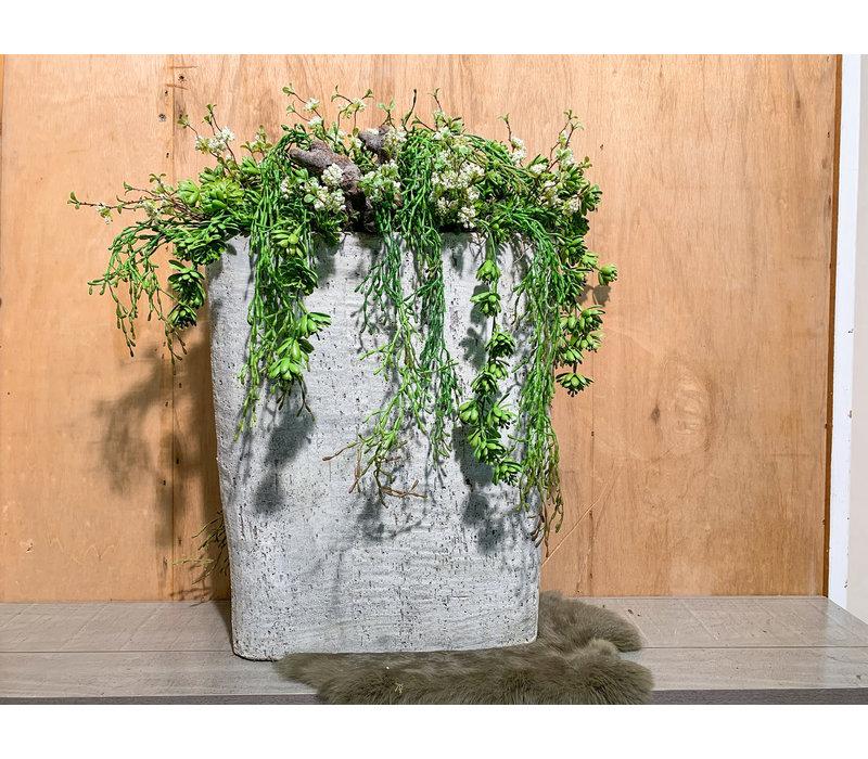 Hoge cementbak gevuld met Rhipsalis, Sedem en fijne bloesem