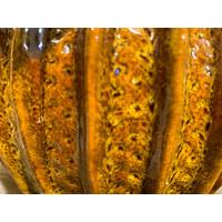 Bruin/geel geglazuurde pot met berkenkatjes & bloesem