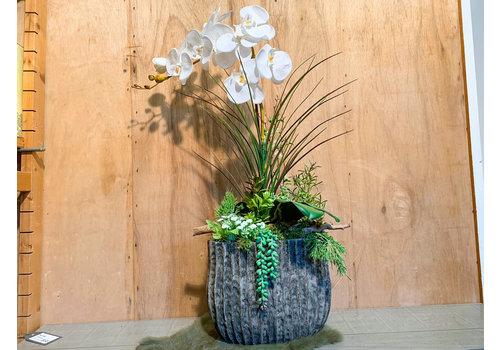 Ron Orchideeën/planten-arrangement