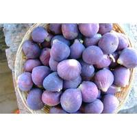 Balsamic Fig Dressing