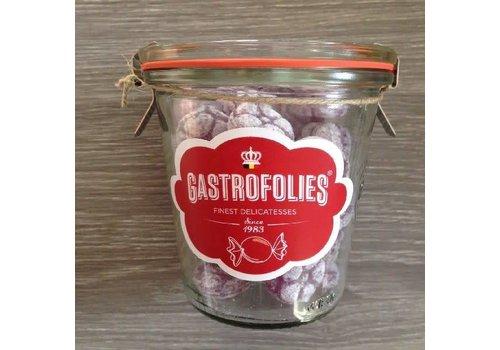 Gastrofollies Violettes en pot