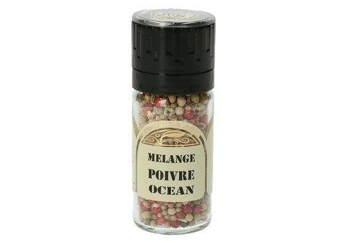 Le Comptoir des épices Ocean Pepper in molen