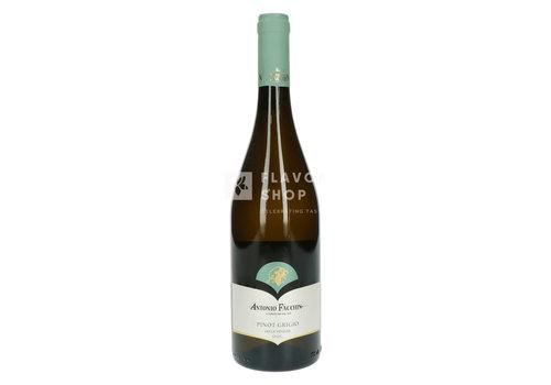 Pinot Grigrio - Antonio Facchin