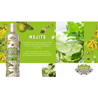 Mojito 'Ready to drink' Cocktail 70 cl