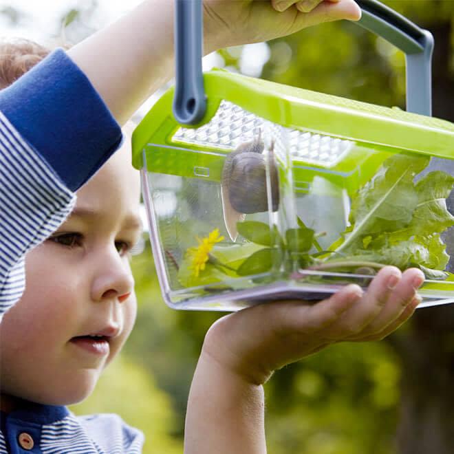 Haba Terra Kids Insectendoos
