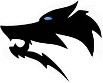 Premium Hundezubehör für aktive Hunde