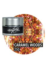 Abstract Colorgel 5 ml Caramel Woods CG250