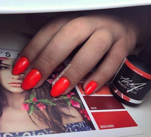 Abstract® Brush N' Color 15 ml Lokelani