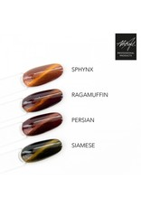 Abstract® Brush N' Color 15 ml cat-eye Persian