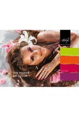 Abstract® Brush N' Color 15 ml Do It!
