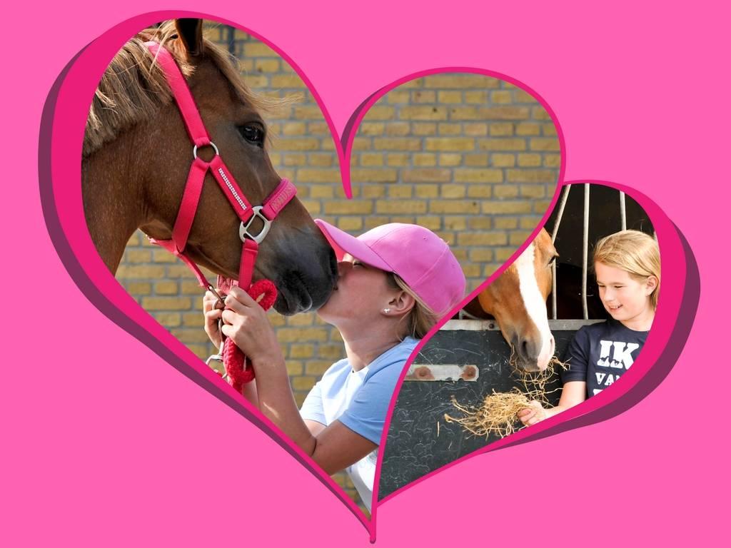 10 redenen waarom Tessa een eigen pony heeft