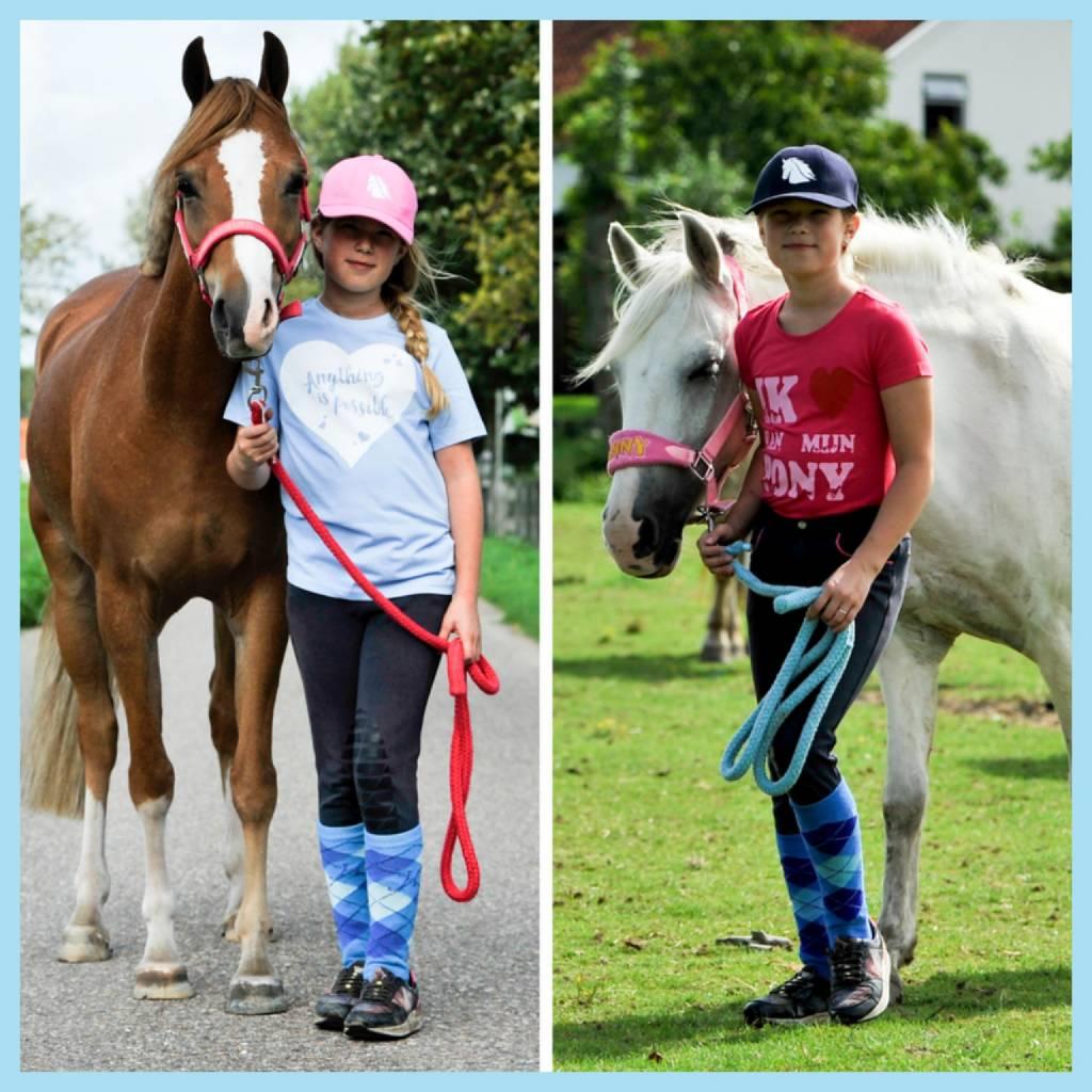 Van manege pony naar privé pony
