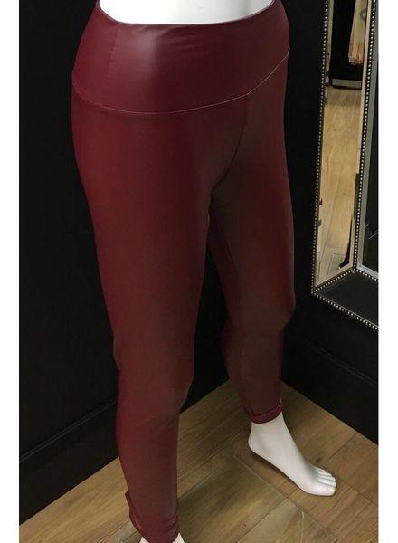 Sheena Shiny Leather Look Leggings