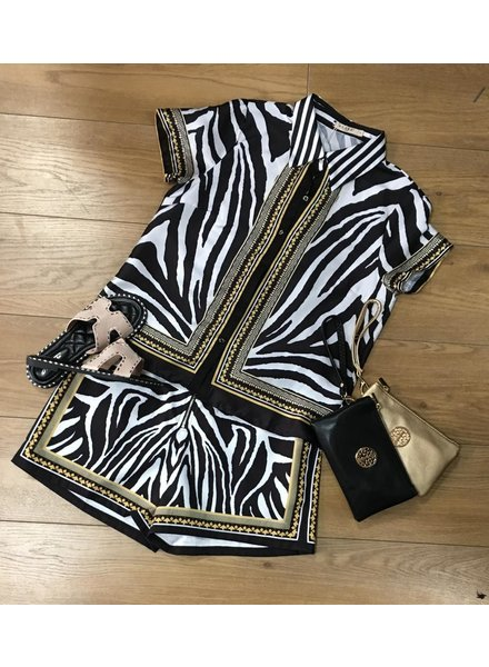 Zara Zebra short set