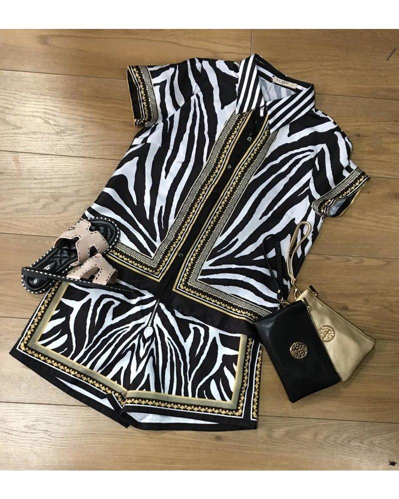 Zara Zebra short set