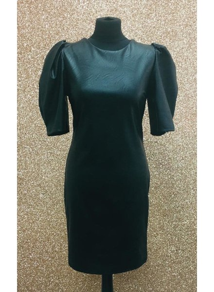 Chrystal rouche sleeve Dress