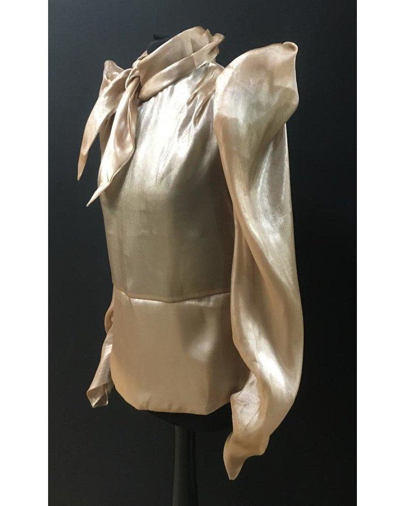 Sheer Sierra pussy bow blouse